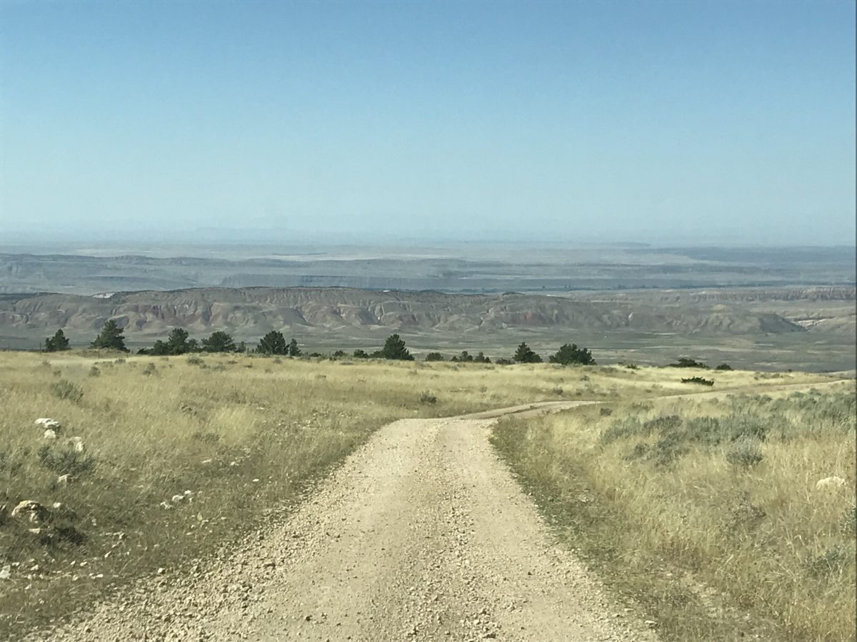 Mindfulness and the Open Road