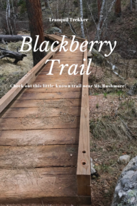 Check out this fun and often overlooked trail, just across the street from Mt. Rushmore!
