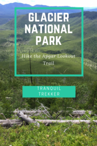 Looking for a challenging hike that rewards you with incredible views at Glacier National Park? Read on for my review of the Apgar Lookout Trail!