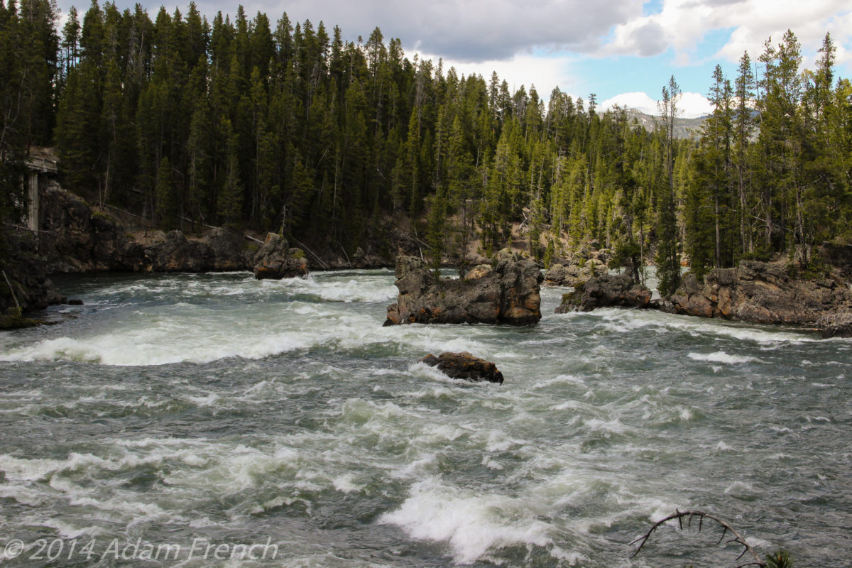 2 of the Best Hikes in Yellowstone National Park