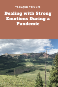 Have you been feeling a lot of strong emotions during the pandemic? I sure have! Read on for ways to maintain a mindful mindset during this difficult time.