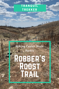 You can enjoy the outdoors regardless of the weather! Check out the Robber's Roost Trail, in Custer State Park, that makes a nice hike in any condition.