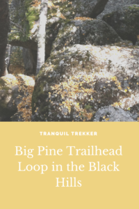 Are you looking for a lightly traveled trail in the Black Hills? Check out the Big Pine Trail, in the Black Elk Wilderness, near Mount Rushmore!