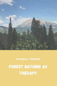 """In this post I discuss an article that examines """"Forest Bathing"""", a practice that uses nature as a tool for therapy, and my experience with it."""