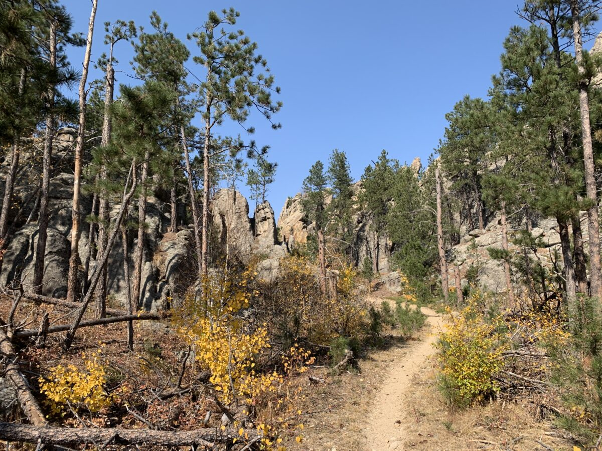 Grizzly Bear Creek Trail in the Black Hills