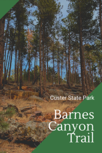 Want a great hike that is family friendly and will help you see the quieter side of Custer State Park? Check out the Barnes Canyon Trail!
