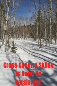 Have you ever wanted to try cross-country skiing? Read on for my experience with this sport that is harder to learn than some suggest!