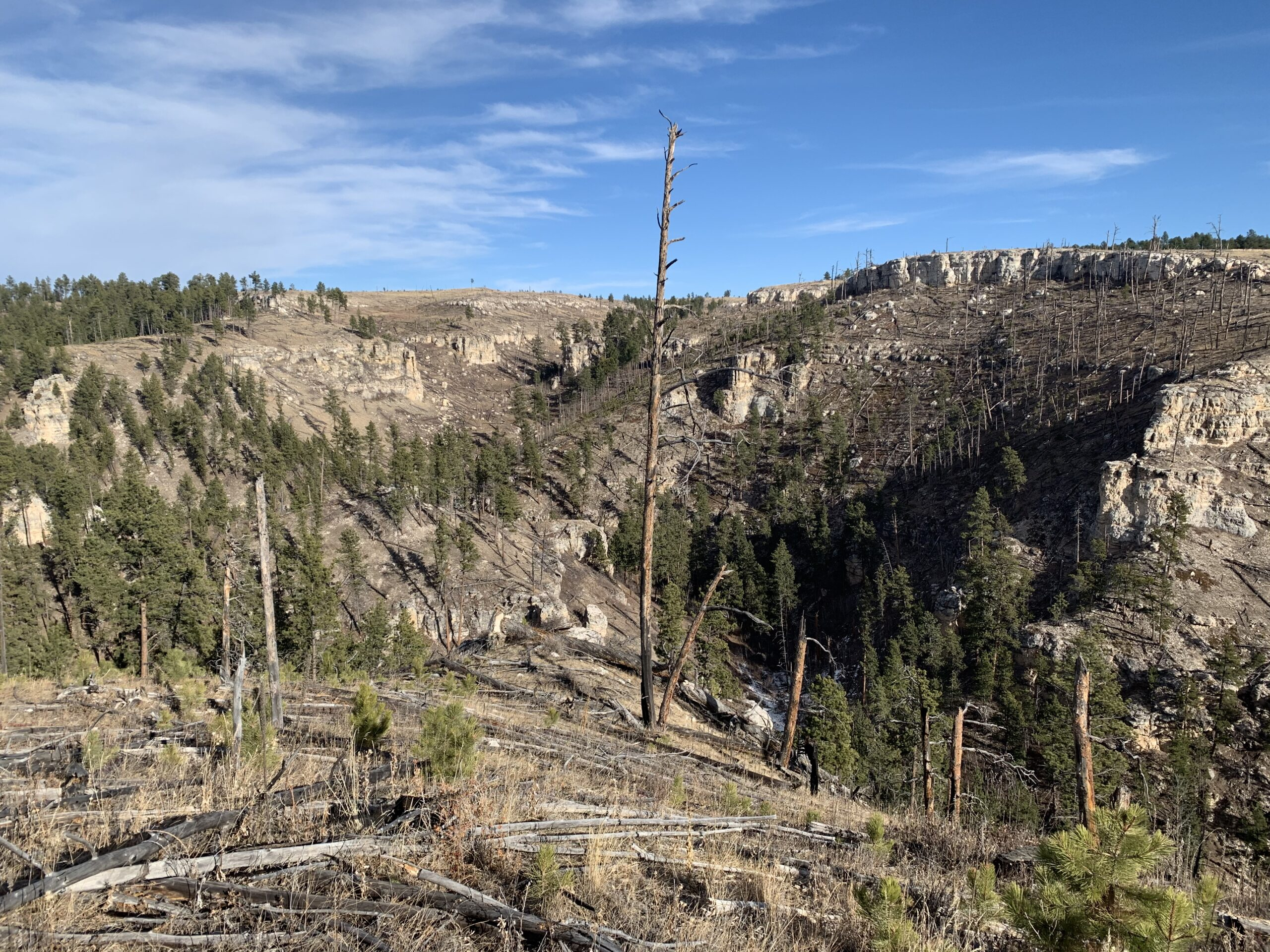 Hike the Hell Canyon Trail in the Black Hills